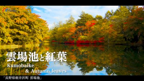 4K)雲場池の紅葉〜長野県軽井沢町〜