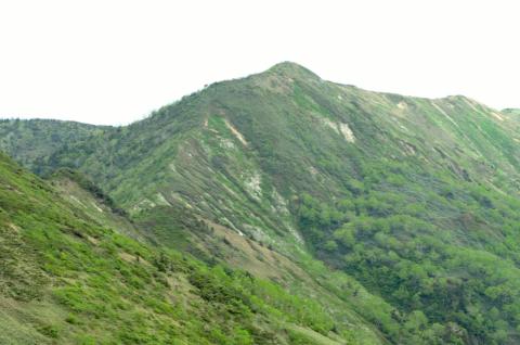 撮影で山に!長野県と群馬県、新潟県の境にある白砂山へ